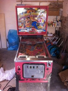 Pinball Champ '82